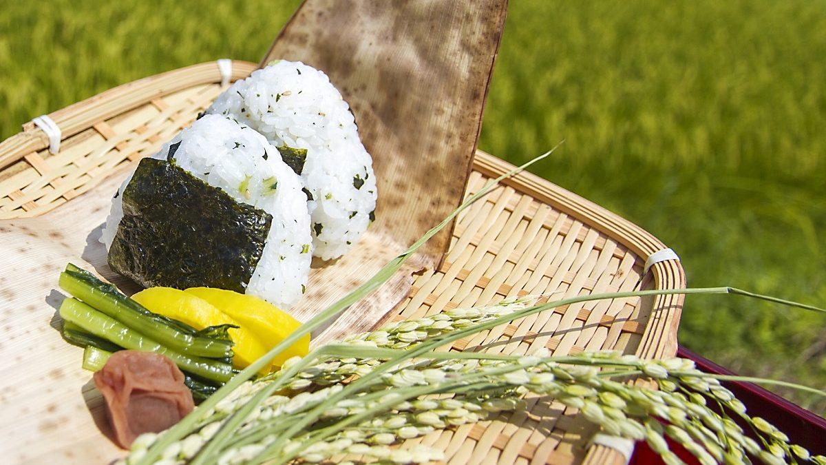 食べ物によるチャクラ調整について~チャクラの色と食べ物の色でチャクラバランスを調整できる!~