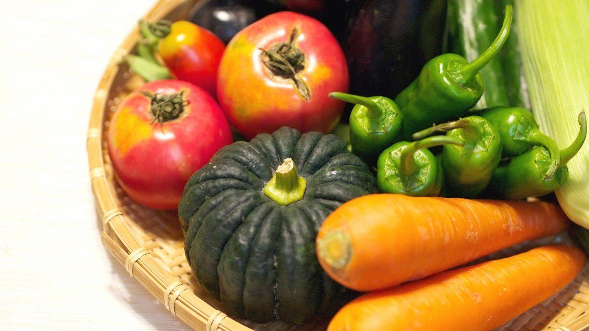 家庭菜園ベジタリアンの「ベジで食べ歩こう」☆第7回。 世界最大の家具量販店で食べるベジボール「IKEAレストラン」