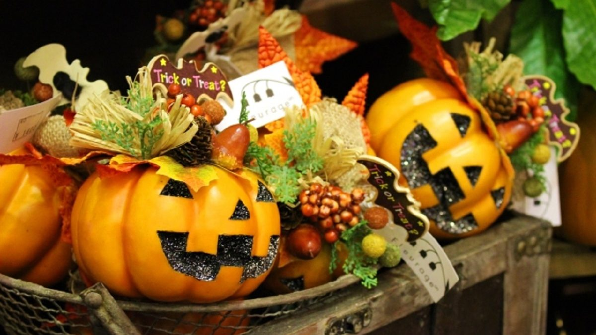 占星術×料理の素敵なマリアージュ『魔女のサバト「Samhain(ハロウィン)」を祝うカボチャとクリームチーズの春巻き』