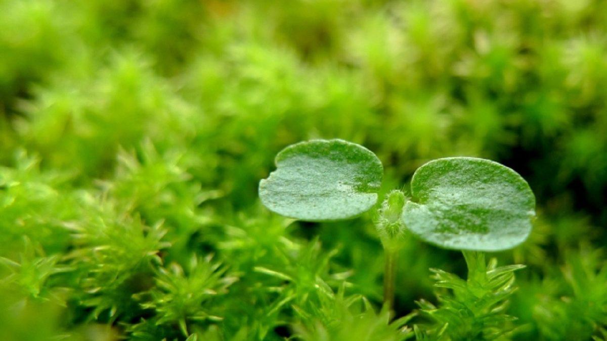 流れが止まっているように感じるときは、自分が成長するチャンス!