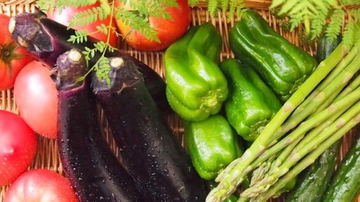 劣化しない!ブレない美人的、 夏野菜エナジーの涼しい食事は美人への近道