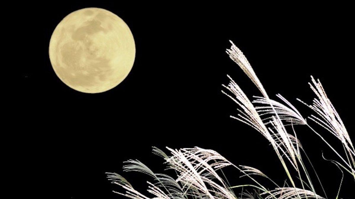 今月のときめき風水~あなたの運勢と開運方位・9月長月