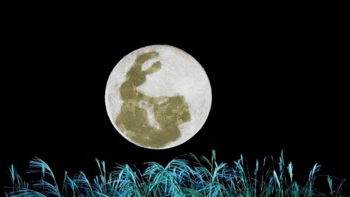 【血液型別花札占い】開運! お月見の楽しみ方!