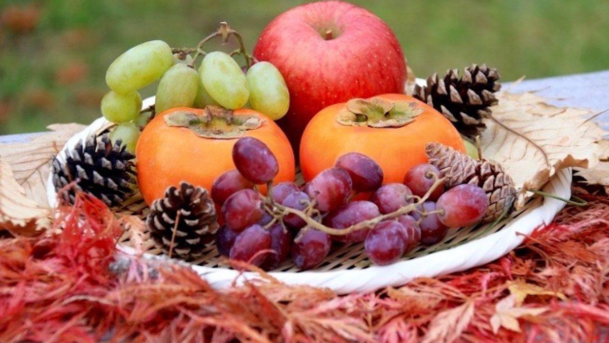 【誕生月別占い】秋本番! 食欲の秋? 芸術の秋? 10月の運勢とハッピー行動10〜12月生まれさん