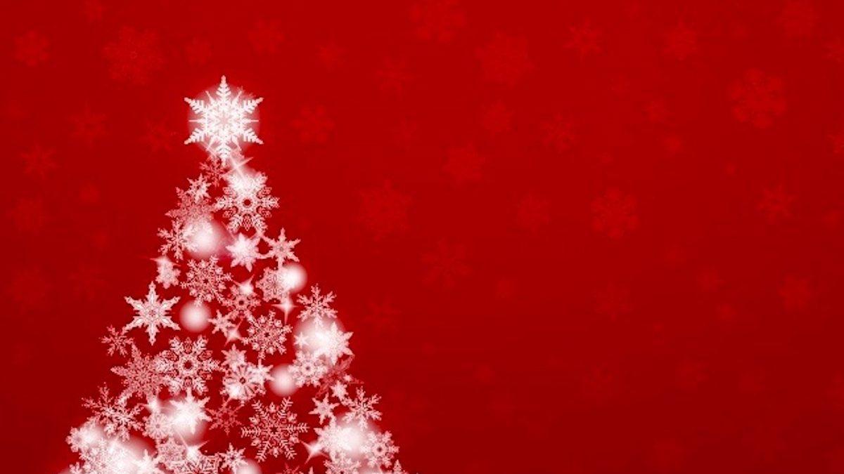 クリスマスは星に願いを。クリスマスツリーには幸せへと導くパワーがあった!
