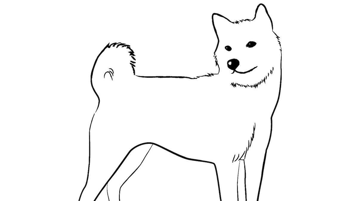 マヤ暦エネルギー予報〜白い犬の13日間〜