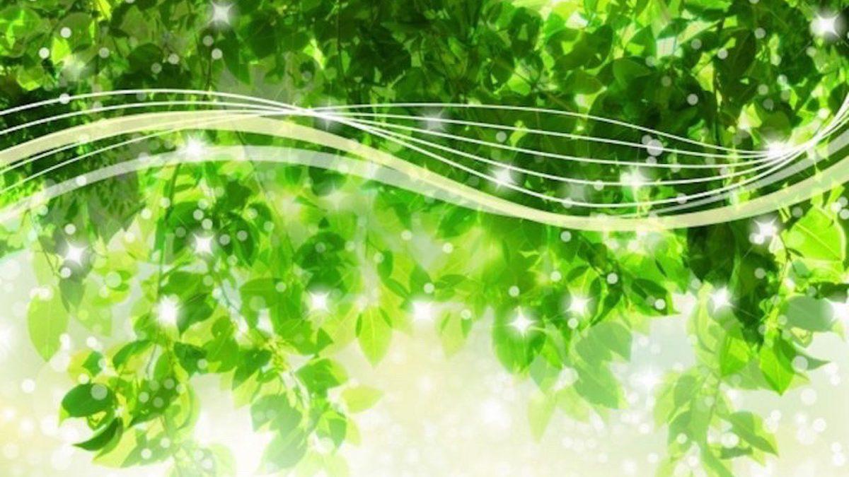 【マヤ暦エネルギー予報】白い風の13日間