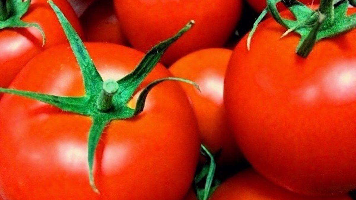 今日もスピリチュアルにベジタリアンスープのある日々を! ハートも温まる 赤いトマトの重ね煮風ハトムギスープ