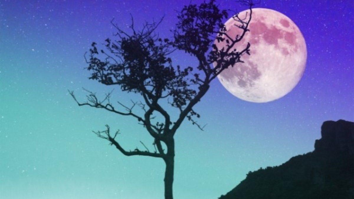 満月の後は周りに広めましょう。【ディセミネーティング・ムーン】とアロマ