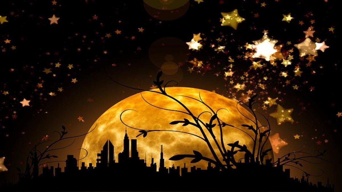 【12星座別タロットカード】新月のタロットパスワーク・1月6日~1月21日