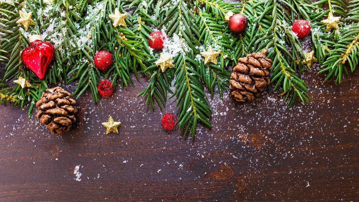 【十二支別花札占い】12月16日~12月22日 金運・健康運とクリスマスまでにやっておきたい事