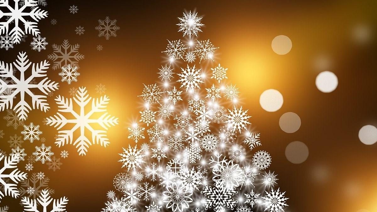 【十二支別花札占い】12月9日~12月15日 金運・健康運と12月の健康法
