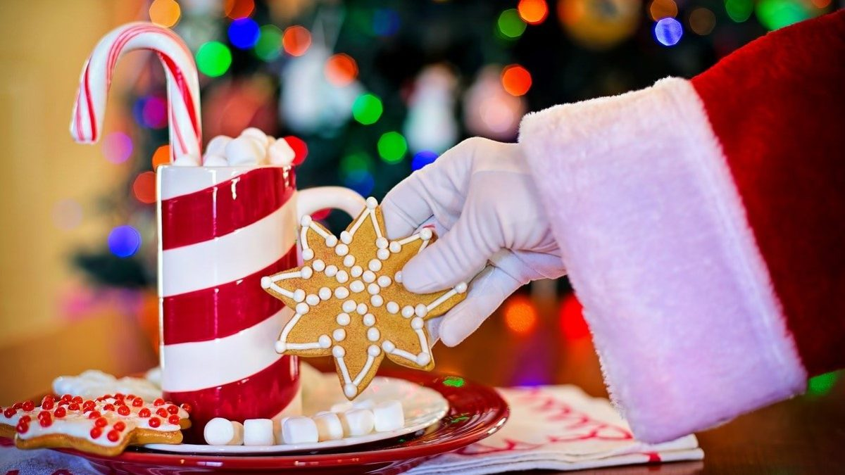 【十二支別花札占い】12月23日~12月29日 金運・健康運とクリスマスイブにやっておきたい事